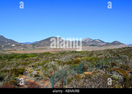 Picture of Elfin Forest in Morro Bay, CA. - Stock Photo