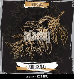 Coffee branch sketch with beans and flowers on black background. Hot drinks collection. - Stock Photo