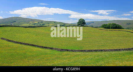 Wensleydale countryside North Yorkshire England - Stock Photo
