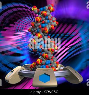 Conceptual illustration of a double stranded DNA (deoxyribonucleic acid) molecule with DNA generating or editing - Stock Photo