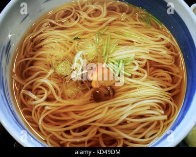 Inaniwa Udon in soup broth (a popular udon variety from Akita Prefecture) - Stock Photo