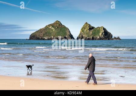 Dog walking at Holywell Bay - a man walking his dog along the shoreline at Holywell Bay Cornwall with the iconic - Stock Photo