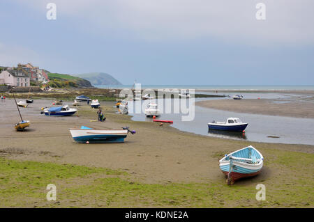 The Parrog Beach - Stock Photo