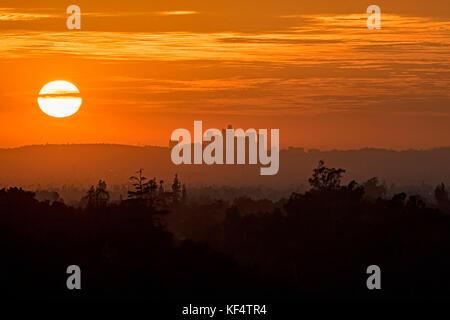 Sunset Los Angeles silhouette - Stock Photo