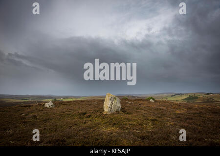 Achnagarron Standing Stones near Rogart, Sutherland, Scottish Highlands, UK - Stock Photo