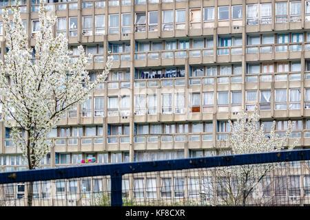 Dilapidated council flat housing block, Robin Hood Gardens, in East London - Stock Photo