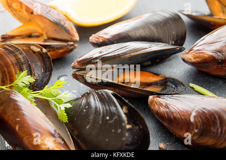 Grilled mussels in its shell. Close up. Healthy food dieting concept - Stock Photo