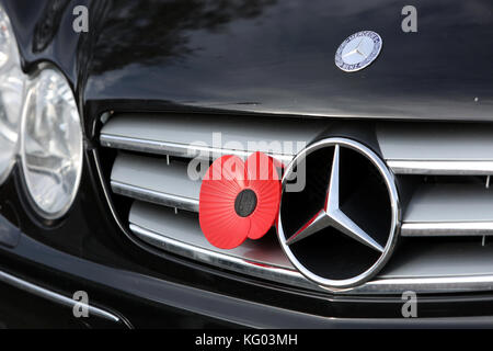 Poppies pictured for Remembrance Sunday in Bognor Regis, West Sussex, UK. - Stock Photo