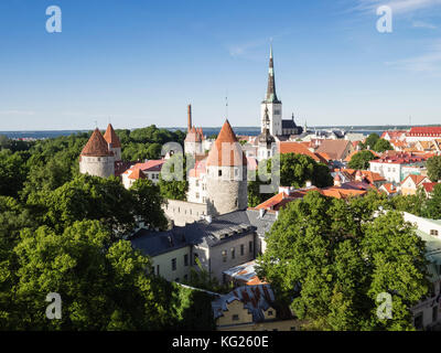 Cityscape view from the Patkuli viewing platform, Old Town, UNESCO World Heritage Site, Tallinn, Estonia, Baltic - Stock Photo