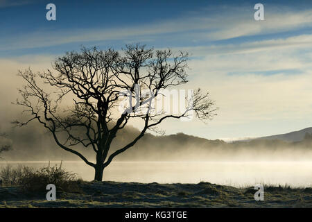 Daybreak over Loch Achray near Aberfoyle in the Trossachs, Scotland. - Stock Photo