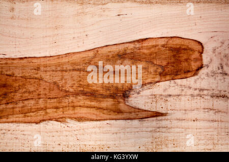 Freshly cut and milled wood texture in a full frame view of the surface of a plank showing a growth pattern for - Stock Photo