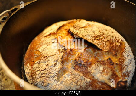 Fresh crusty loaf of artisanal homemade bread baked in a Lodge Dutch oven cast iron pot in an doven at high temperatures. - Stock Photo