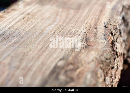 Close up detail of freshly milled lumber showing the flat surface on the tree trunk with a distinct wood grain pattern - Stock Photo