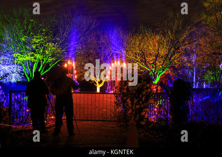 Syon Park, London, UK. 10th Nov, 2017. A trail leads visitors through the illuminated Syon Park with beautifully - Stock Photo