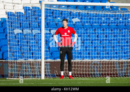 Cardiff, Wales, UK, November 13th 2017. Wayne Hennessey of Wales during training at Cardiff City Stadium ahead of - Stock Photo