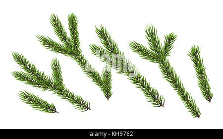 Christmas trees element - Stock Photo