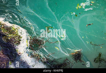 Yarmouth harbour, Isle of Wight, Hampshire, England with abstract of algae and scum floating on the water at  2017 - Stock Photo