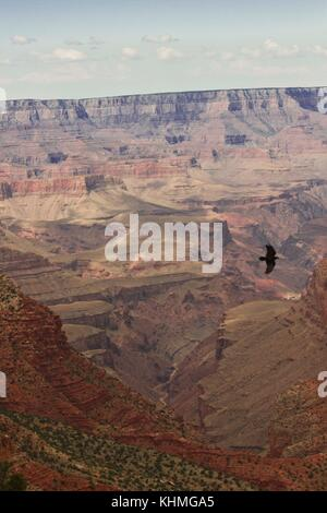 Arizona, USA, August 7, 2013: The beauty of Grand Canyon. Grand Canyon National Park, a powerful and inspiring landscape, - Stock Photo