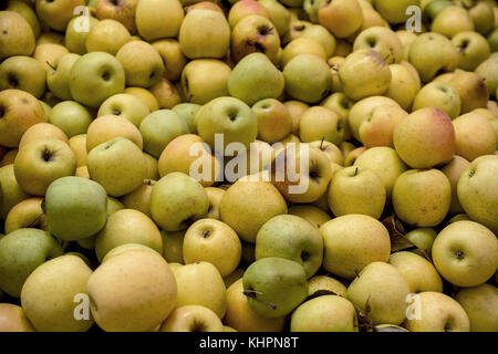 A group of ripe Golden Delicious apples  on display at a market in Apple Hills, California, USA- background or backdrop - Stock Photo