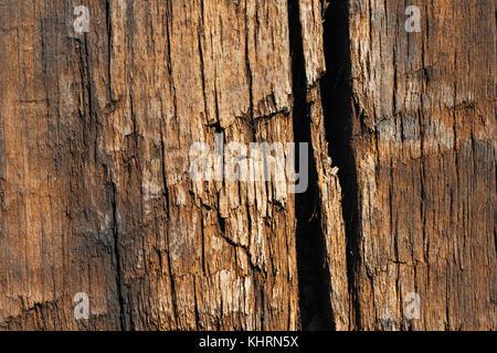 Texture Of Old Wooden Railway Sleeper - Stock Photo