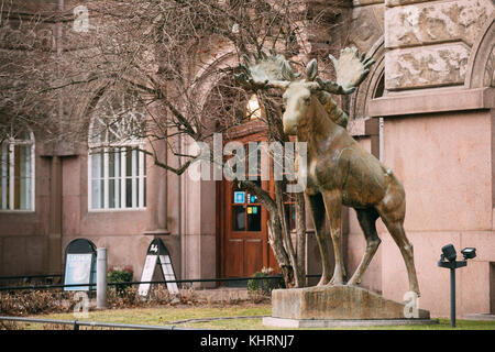 Helsinki, Finland - December 7, 2016: Statue Of Elk At Entrance In Natural History Museum Of Helsinki. - Stock Photo