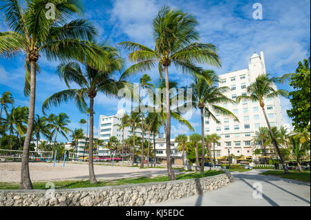 View of palm trees in Lummus Park with backdrop of art-deco Ocean Drive in South Beach, Miami - Stock Photo