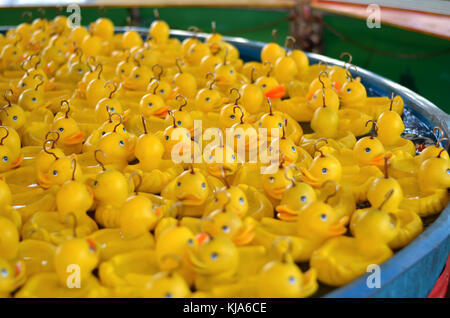 rubber duck in a pool. A rubber duck is a toy shaped like a stylized duck, generally yellow with a flat base. It - Stock Photo