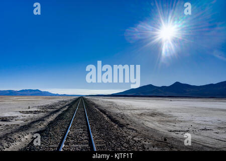 Photo taken in August 2017 in Altiplano Bolivia, South America: - Stock Photo
