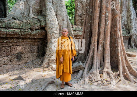 Buddhist monk posing at Ta Prohm in Siem Reap. Built in 12-13th century Ta Prohm temple was later the location for - Stock Photo