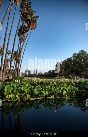 Echo Park, Los Angeles, California, America, USA - Stock Photo