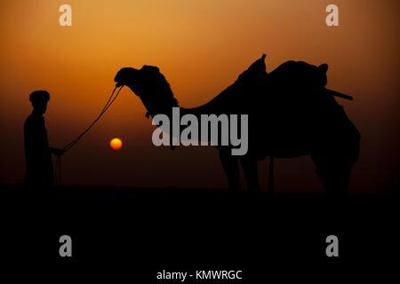 man looking at his camel during sunset khuri dunes in thar desert near jaisalmer in rajasthan state in india - Stock Photo