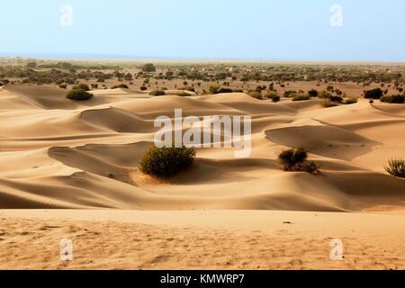 khuri dunes in thar desert near jaisalmer in rajasthan state in india - Stock Photo