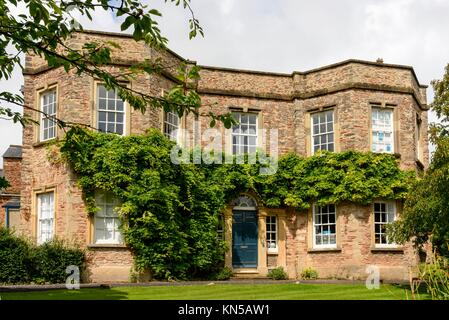 vine on old stone building, Wells, vine on old house in historic old town. - Stock Photo