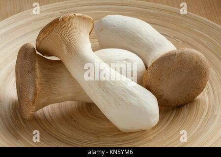 Fresh raw king oyster mushrooms. - Stock Photo