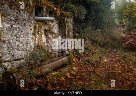 Old, abandoned lodge deep in the forest. - Stock Photo