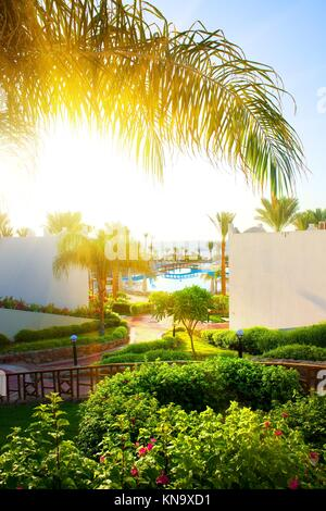 Beautiful landscape in the hotel of Egypt. - Stock Photo