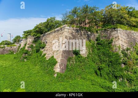 Turret of the osaka castle with alga - Stock Photo
