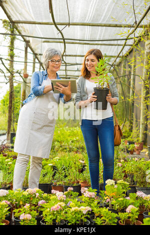 Worker and customer in a green house - Stock Photo