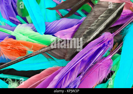 Colorful feather rainbow bird feathers. Goose dove duck parrot quill feathres... Rainbow colored background. Abstract. - Stock Photo