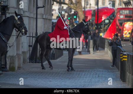 Whitehall, London, UK. 19 December 2017. A Life Guard on morning sentry duty at Horse Guards entrance brings his - Stock Photo