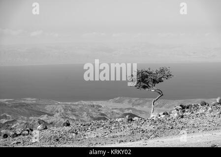 A view of the Gulf of Tadjoura from Arta, Djibouti, East Africa in Black and White - Stock Photo