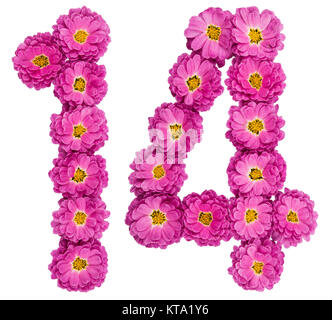 Arabic numeral 14, fourteen, from flowers of chrysanthemum, isolated on white background - Stock Photo