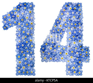 Arabic numeral 14, fourteen, from blue forget-me-not flowers, isolated on white background - Stock Photo