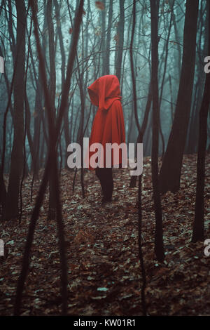 Mysterious figure in misty forest. Red hooded - Stock Photo