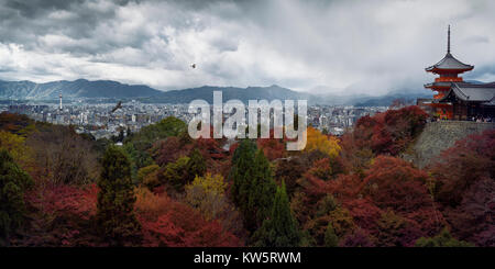Dramatic panoramic view of Kyoto colorful red autumn scenery view from Kiyomizu-dera, Sanjunoto pagoda and Kyoto - Stock Photo