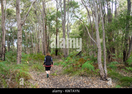 A woman walking along a track through a eucalyptus forest in Margaret River, Western Australia. - Stock Photo