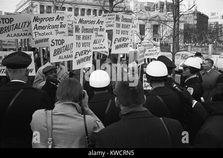 African Americans protesting outside the White House in support of Selma demonstrators. Their signs read, 'We demand - Stock Photo
