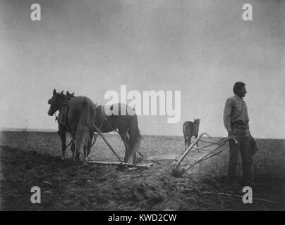 THE DAWN OF CIVILIZATION, a photo of a Native American in a field with a horse-drawn plow. C. 1899-1900. He was - Stock Photo