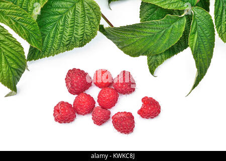Red fresh ripe raspberry with green leaves isolated on a white background - Stock Photo