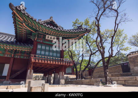 Changdeokgung Palace or Changdeok Palace, is a large park in Jongno-gu, Seoul, South Korea. - Stock Photo